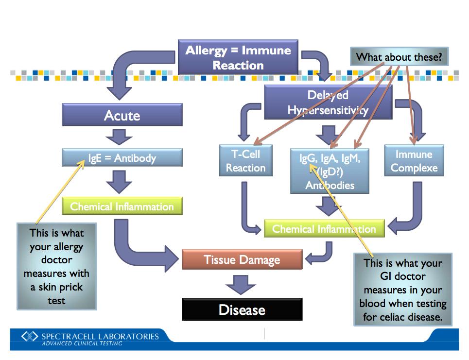 диетолог запорожье